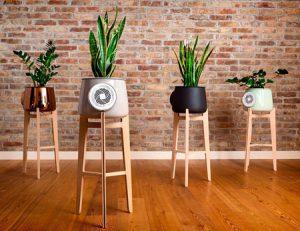 رونمایی از گلدانی که سموم منزلتان را پاکسازی می کند